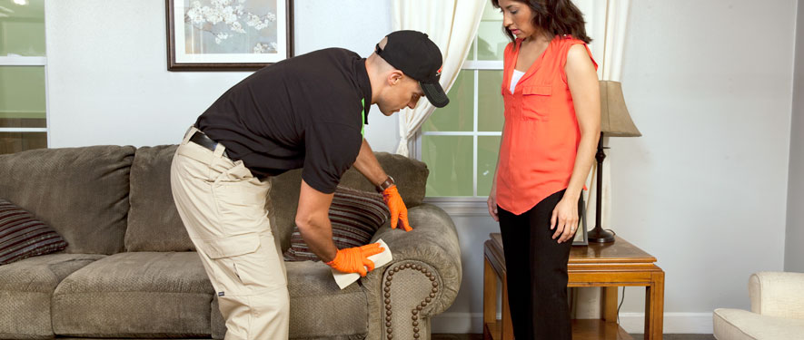 Jefferson Hills, PA carpet upholstery cleaning